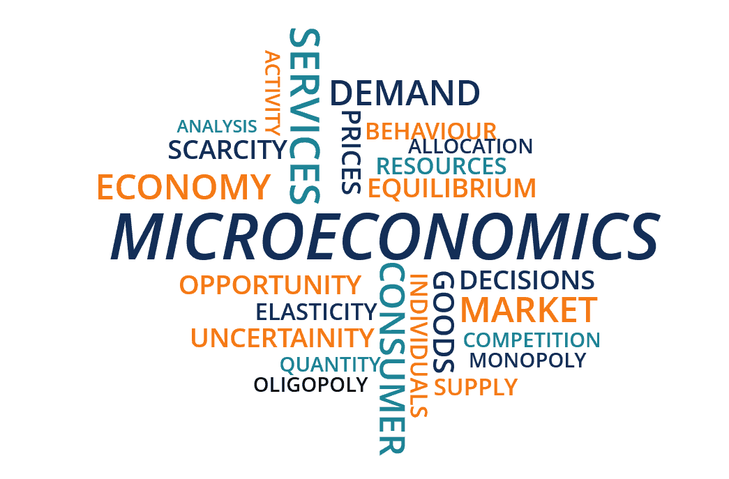 Micro Economics MCQ